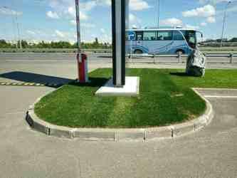 Рулонный газон Сургут цена